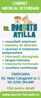 Cabinet medical veterinar Timisoara dr. Horvath Atilla
